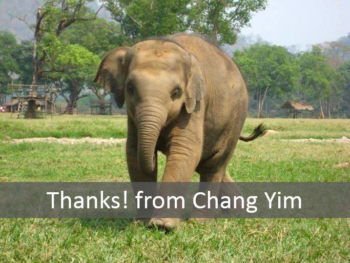 Chang Yim the smiling elephant