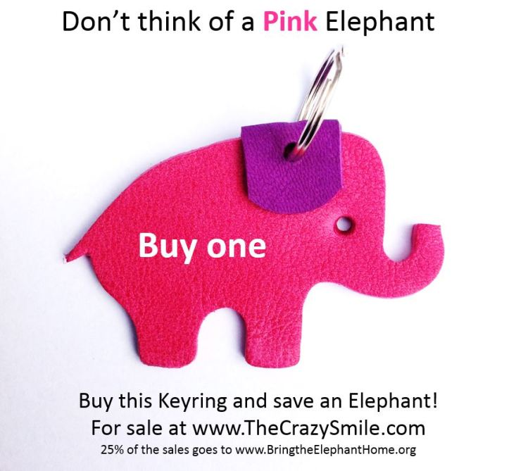 Do not think of a pink elephant